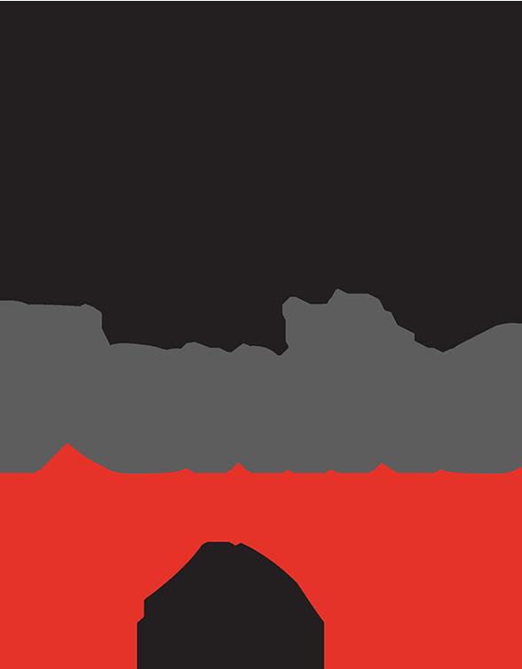 logo_feniks